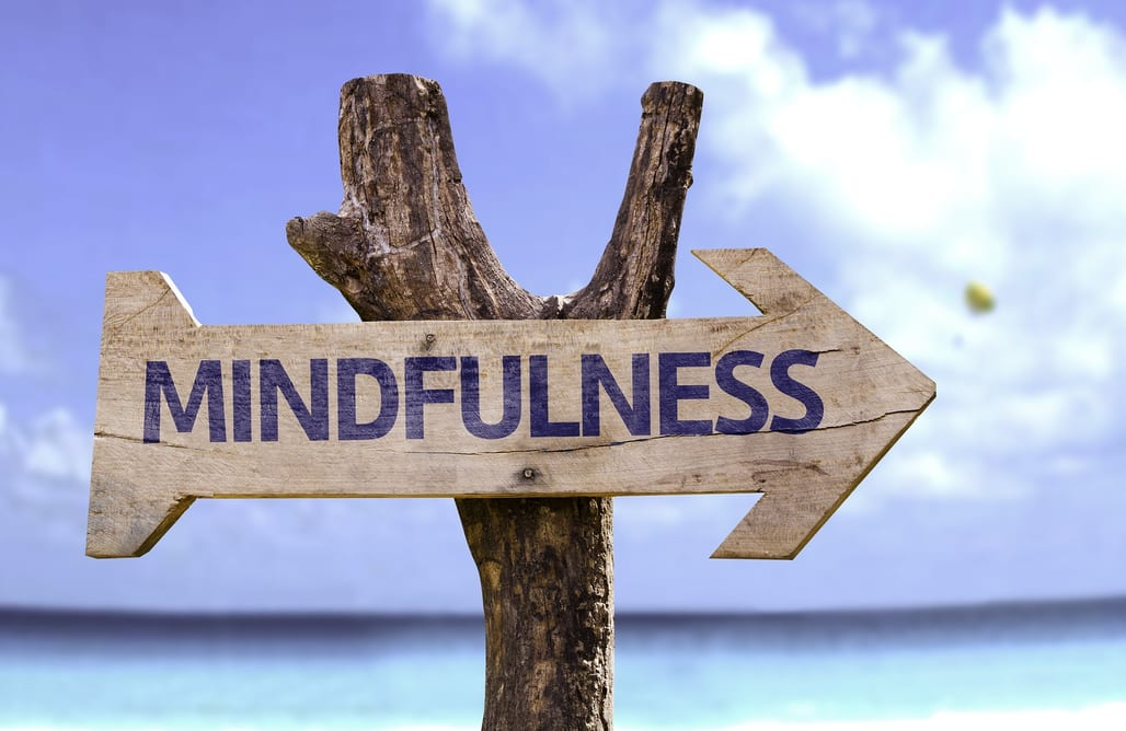 Using Mindfulness to Wind Down the Preoccupation with Addiction and Recovery